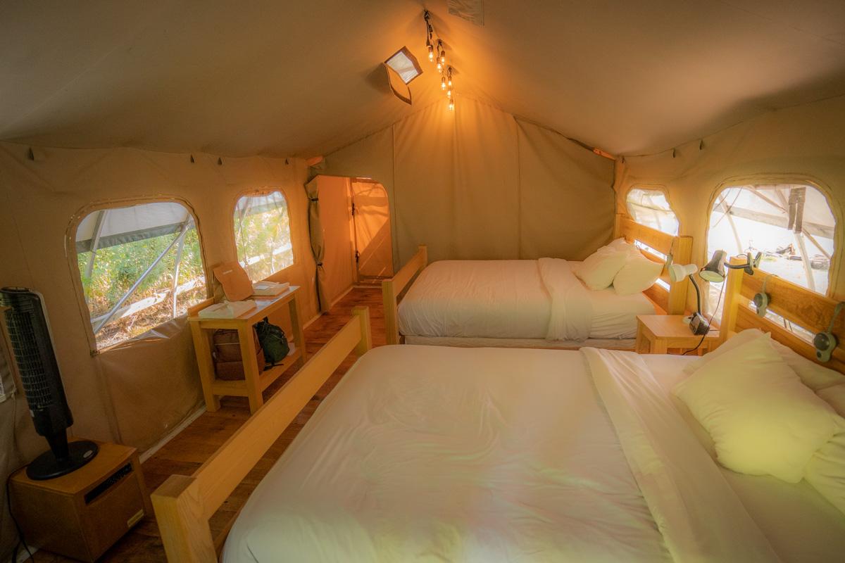 Queen Wilderness Suite